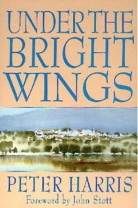 Under the Bright Wings - front cover