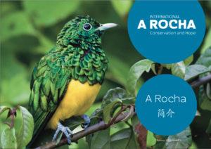Introducing A Rocha - Chinese simplified (screenshot)