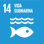 SDG 14 Spanish