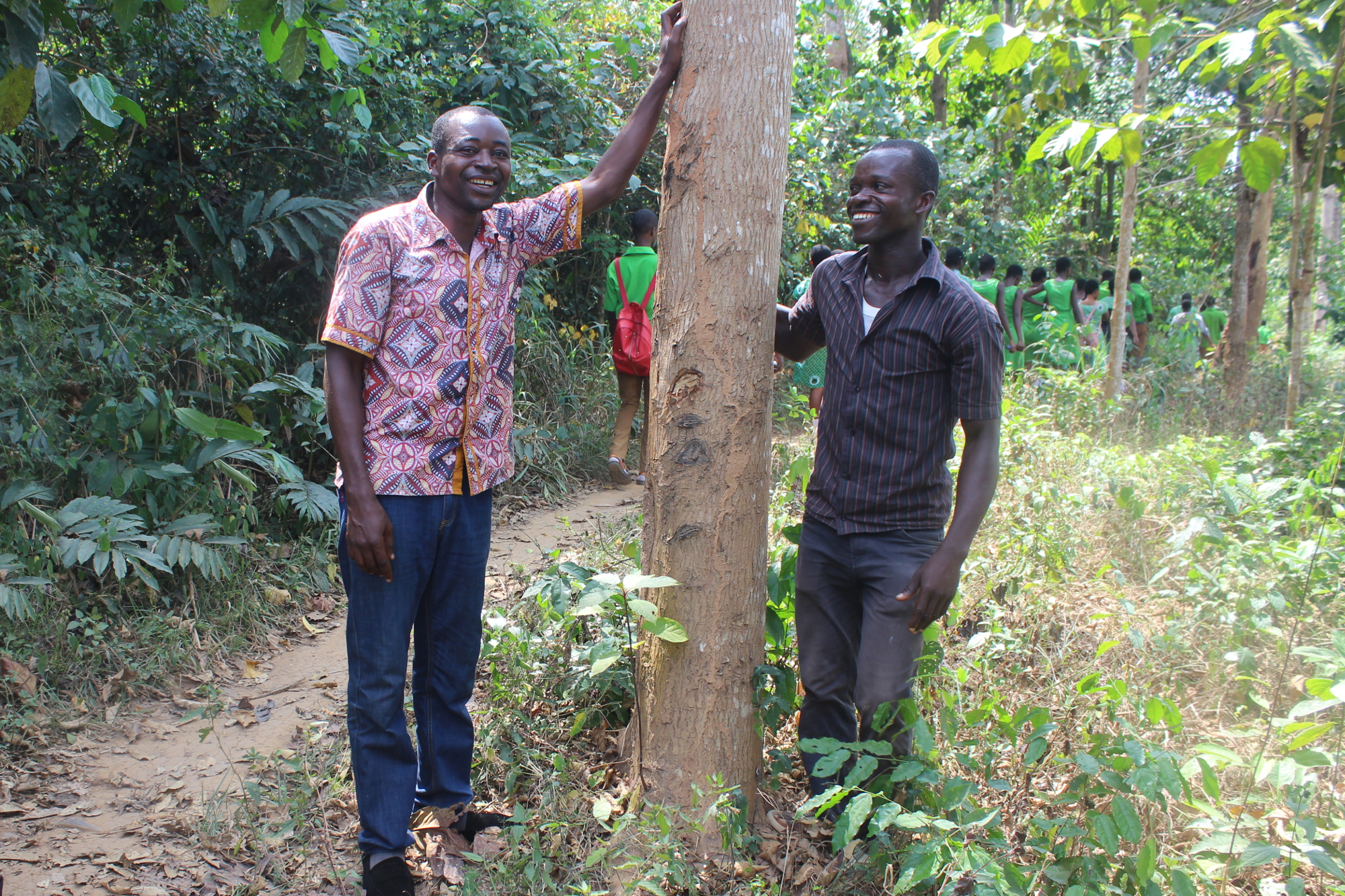 Ghana trees - Climate Stewards