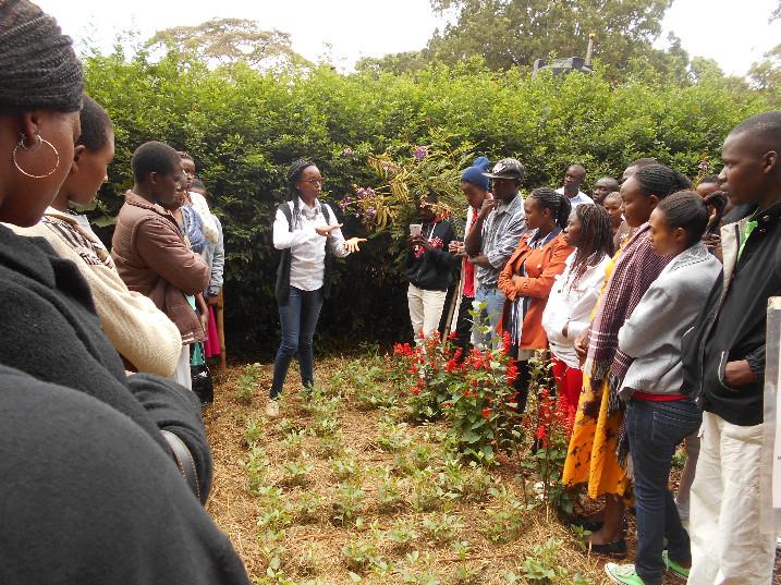 Learning with EE volunteer, Claire Nasike, at A Rocha Kenya's centre in Karara, Nairobi.