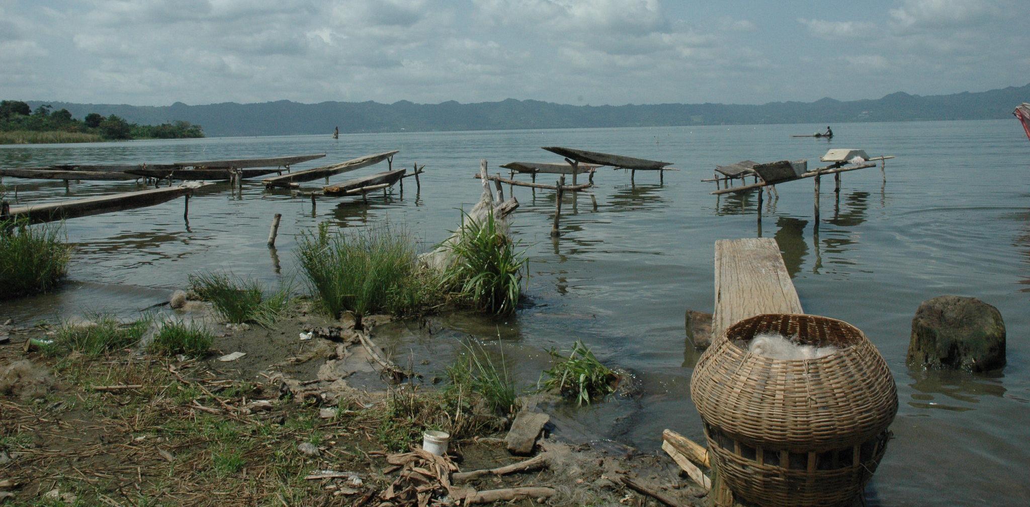 Depuis 2012, A Rocha Ghana soutient la conservation des habitats humides et forestiers du lac Bosomtwe, d'une grande diversité (Chris Naylor)