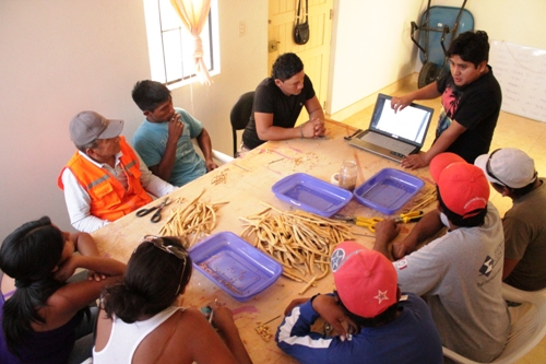 Project staff being trained by A Rocha Peru's Talara Project Coordinator (A Rocha Peru)