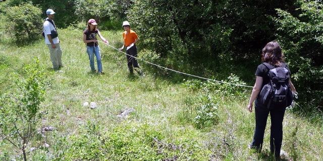2 Peony fieldwork