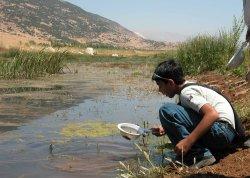 No Líbano, grupos de escolas visitam o sapal de Aammiq para participar em atividades educativas sobre a vida selvagem local
